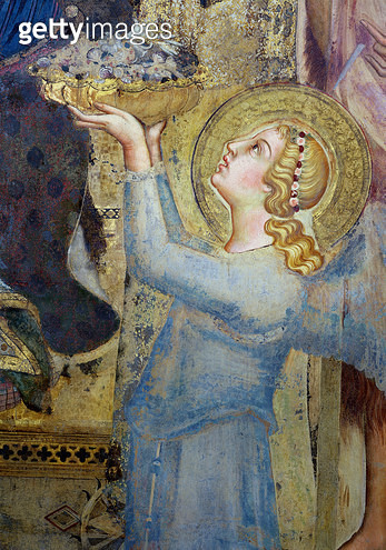 <b>Title</b> : Maesta: Angel Offering Flowers to the Virgin, 1315 (fresco) (detail of 51591)<br><b>Medium</b> : <br><b>Location</b> : Palazzo Pubblico, Siena, Italy<br> - gettyimageskorea