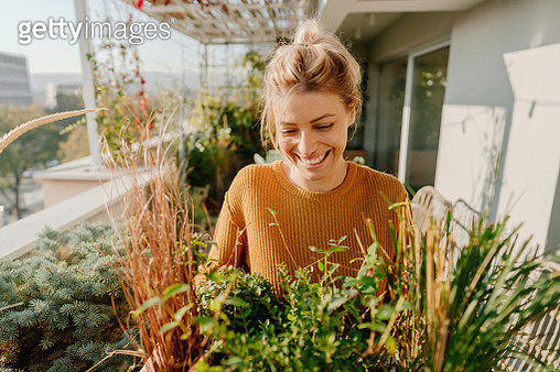Arranging my rooftop garden - gettyimageskorea
