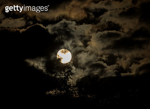 Night of Mystery - gettyimageskorea