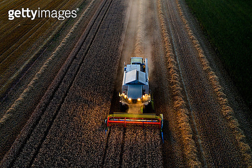 Aerial view of a combine harvester working on a large wheat field at night. - gettyimageskorea