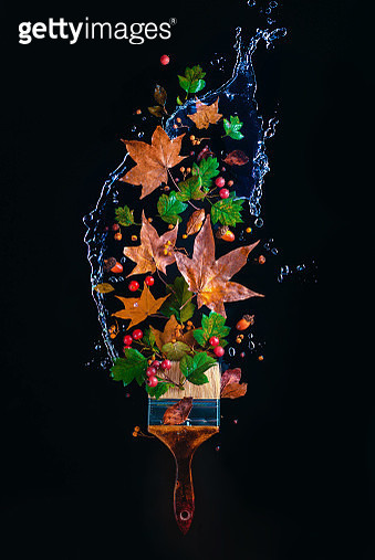 Paintbrush with water splash, flying autumn leaves and acorns. Creative seasonal concept on a dark background with copy space - gettyimageskorea