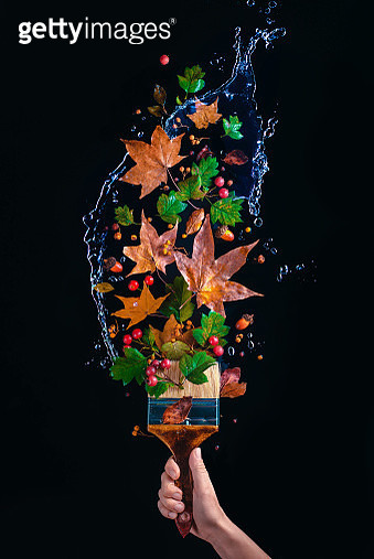 Paintbrush in a hand with water splash, flying autumn leaves and acorns. Creative seasonal concept on a dark background with copy space - gettyimageskorea