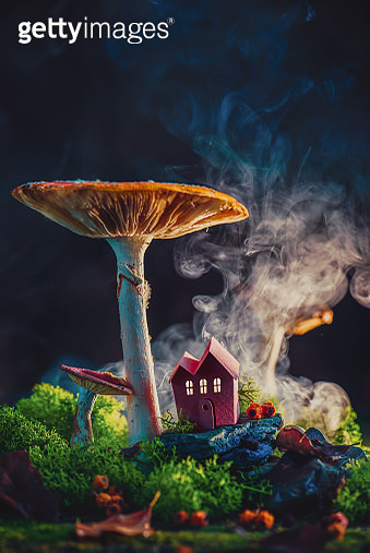 Giant mushroom with a tiny house. Tiny word, fairy tale concept. Autumn still life with copy space. - gettyimageskorea