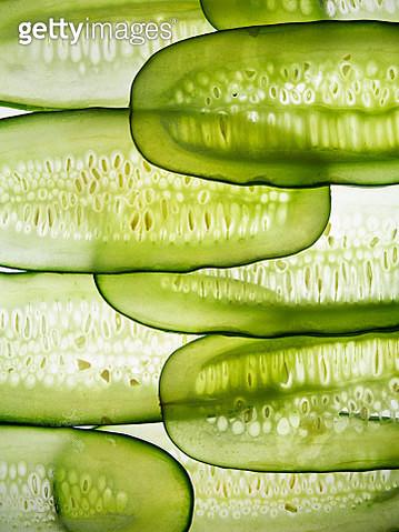 Cucumber slices in line - gettyimageskorea