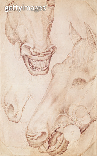 <b>Title</b> : Heads of Horses (pen & ink on paper)<br><b>Medium</b> : pen and ink on paper<br><b>Location</b> : Louvre, Paris, France<br> - gettyimageskorea