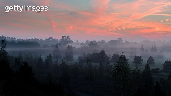 Misty Morning - gettyimageskorea