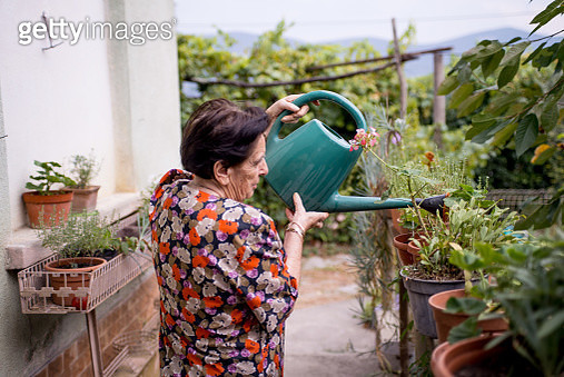 Over 90 Senior Woman Taking Care Of Flowers - gettyimageskorea