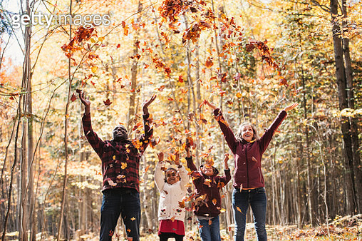 Mixed raced family in a forest, throwing maple leaves - gettyimageskorea