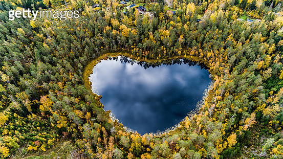 Heart-shaped lake surrounded by forest - gettyimageskorea