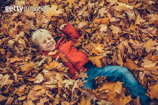 Boy in the autumnal park - gettyimageskorea