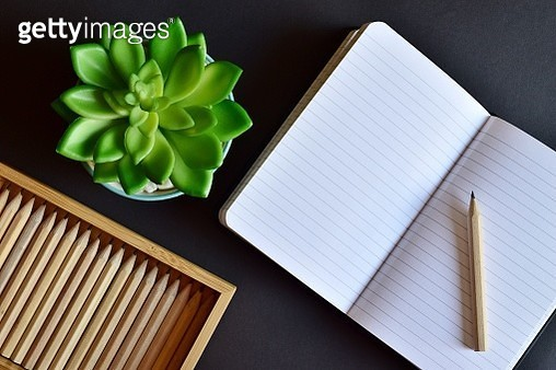 High Angle View Of Succulent Plant With Open Book And Pencils On Table - gettyimageskorea