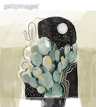Cactus plant on the moonlight. - gettyimageskorea