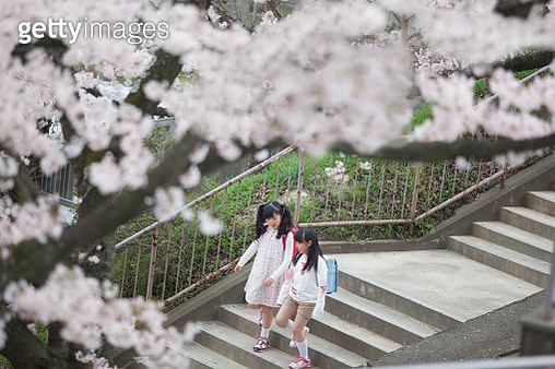Japanese elementary school students to go down the stairs - gettyimageskorea