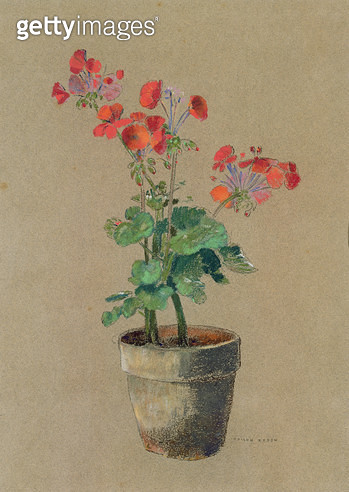 <b>Title</b> : Geraniums in a pot (pastel)<br><b>Medium</b> : pastel on paper<br><b>Location</b> : Haags Gemeentemuseum, The Hague, Netherlands<br> - gettyimageskorea