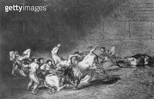 <b>Title</b> : Two teams of picadors thrown one after the other by a single bull, plate 32 of 'The Art of Bullfighting', pub. 1816 (etching)<br><b>Medium</b> : etching, aquatint, drypoint and burin<br><b>Location</b> : Private Collection<br> - gettyimageskorea