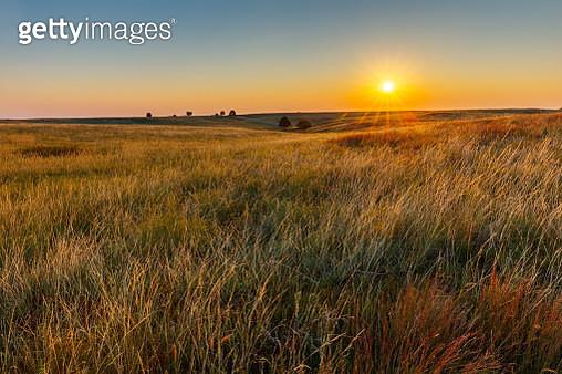 American Great Plains Prairie at Sunrise - gettyimageskorea