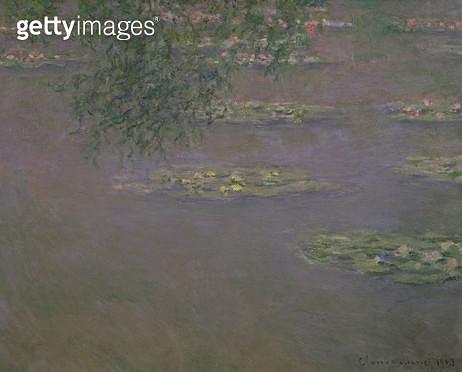 <b>Title</b> : Waterlilies, 1903 (oil on canvas)<br><b>Medium</b> : <br><b>Location</b> : Bridgestone Museum of Art, Tokyo, Japan<br> - gettyimageskorea