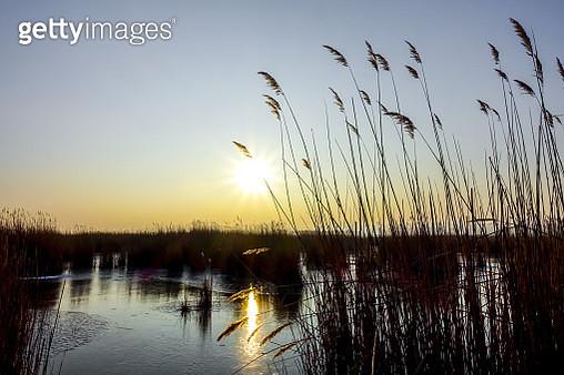 Lake Neusiedler See in Winter, Moerbisch, Burgenland, Austria - gettyimageskorea