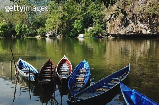 Boats Moored On Lake Against Trees - gettyimageskorea