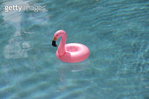 Pink flamingo pool float in a swimming pool - gettyimageskorea
