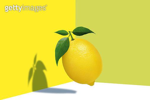 Lemon fruit on a geometric space - gettyimageskorea