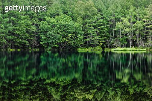 The scenery of Mishakaike in Chino city, Nagano - gettyimageskorea