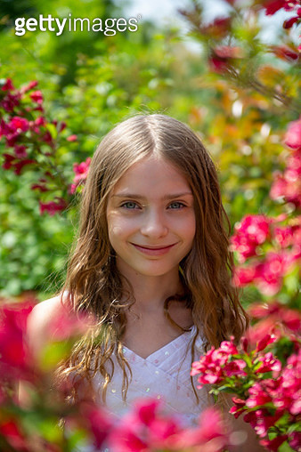 Portrait of a girl on a blossoming bush - gettyimageskorea