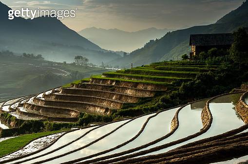 Dawn of rice terrace - gettyimageskorea