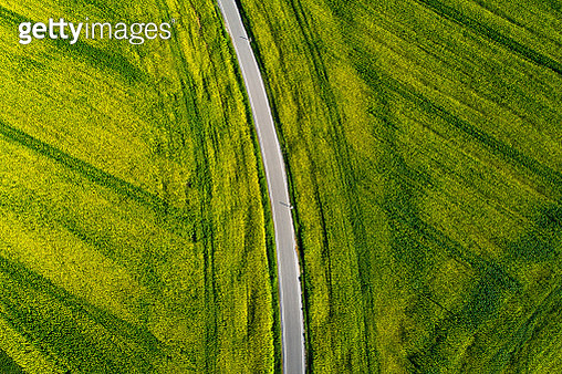 Road through agricultural fields from above - gettyimageskorea