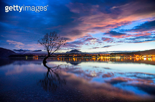 Dawn Approaches The Tree At Lake Wanaka, New Zealand - gettyimageskorea