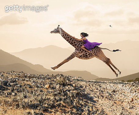 Woman Riding A Galloping Giraffe - gettyimageskorea
