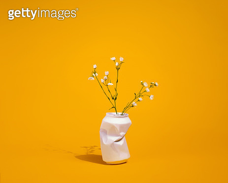 Aluminum soft drink can repurposed as a vase for a bouquet of Missouri prairie wildflowers (Fleabane) on a yellow background with a strong shadow. - gettyimageskorea