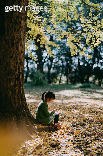 Cute 4 year old girl sitting under tree with book in autumn - gettyimageskorea