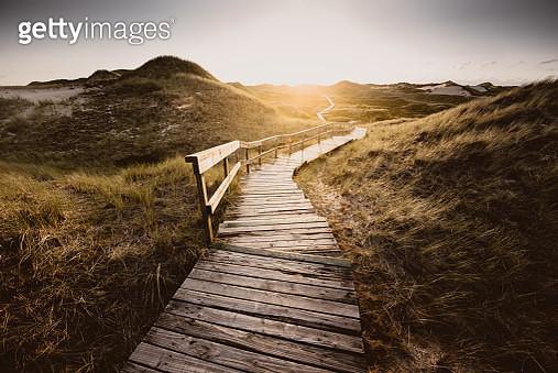 Way through the dunes - gettyimageskorea