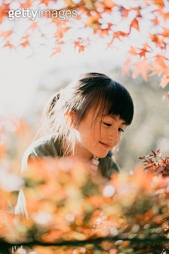 Cute young girl smiling enjoying Autumn color leaves - gettyimageskorea