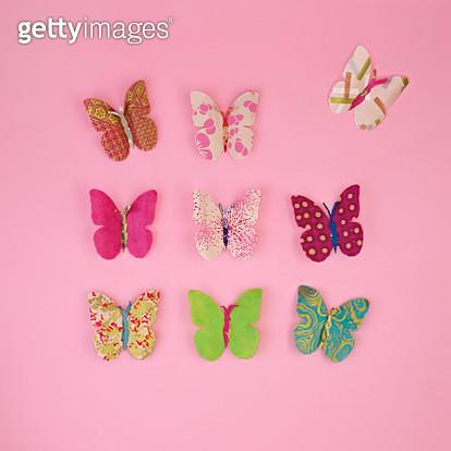 Paper butterflies - gettyimageskorea