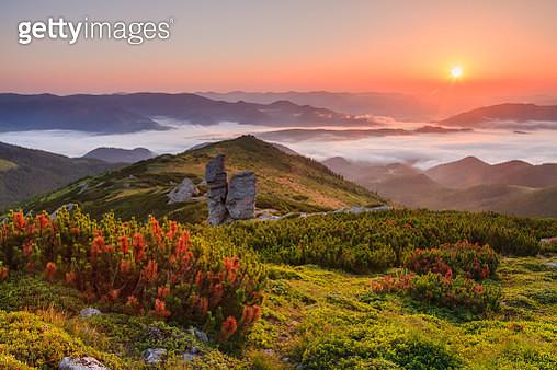 Beautiful mistu dawn in the mountains - gettyimageskorea