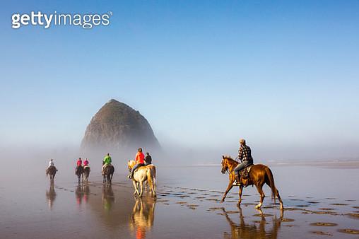 People horseback riding on beach - gettyimageskorea