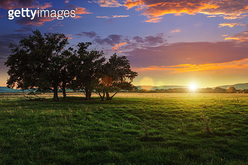 Sunset in the nature - gettyimageskorea