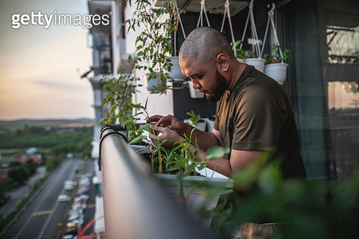 Home gardening at balcony - gettyimageskorea