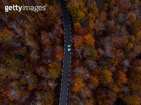 Aerial picture of the stunning road between beech forest with autumn colors in the Catalan mountains. - gettyimageskorea