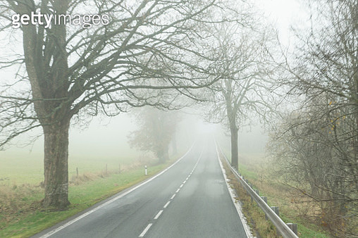 Foggy road in Czech Republic - gettyimageskorea
