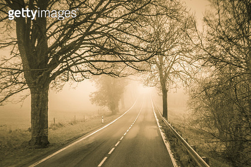 Foggy road in the Czech Republic (sepia-toned) - gettyimageskorea