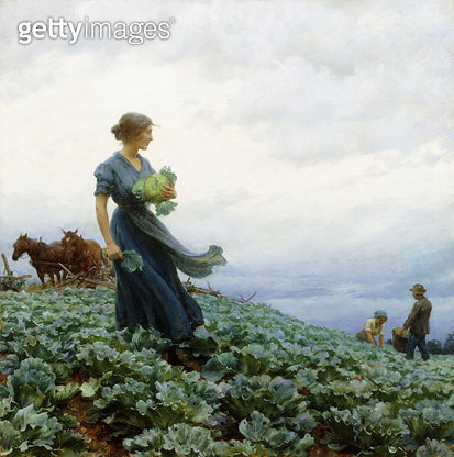 The Cabbage Field/ 1914 (oil on canvas) - gettyimageskorea