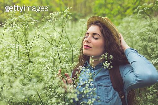 Among The Wildflowers - gettyimageskorea