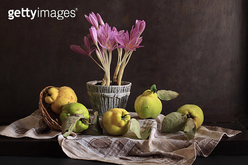 Colchicum And Quince Quintet - gettyimageskorea
