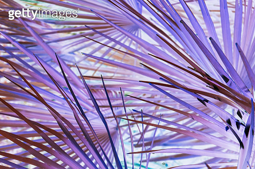 Abstract background in purple tones - gettyimageskorea