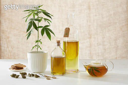 Medicinal and healing properties of cannabis - gettyimageskorea