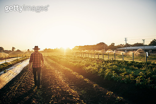 Keeping a close watch on his crops - gettyimageskorea