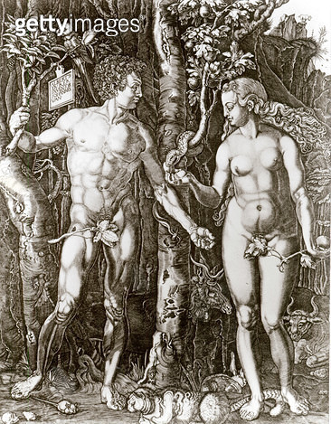 <b>Title</b> : Adam and Eve, after Albrecht Durer (1471-1528) (etching) (b/w photo)<br><b>Medium</b> : <br><b>Location</b> : Harris Museum and Art Gallery, Preston, Lancashire, UK<br> - gettyimageskorea